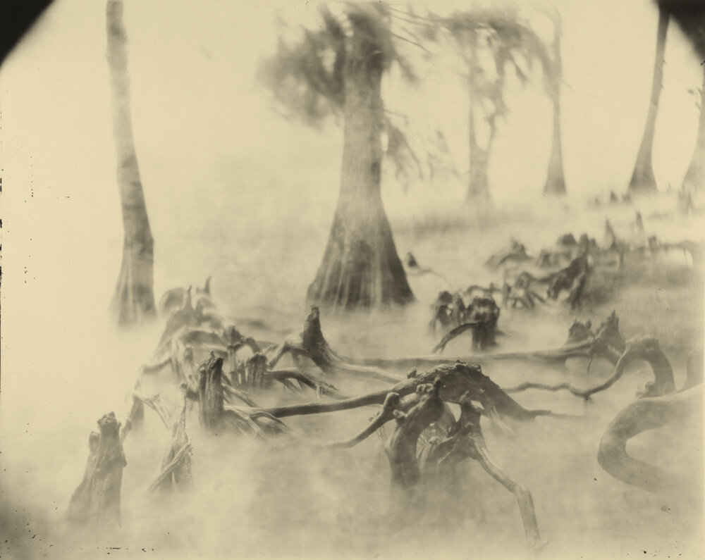 Untitled, Swamp Bones, 1992-2004, Fig 7